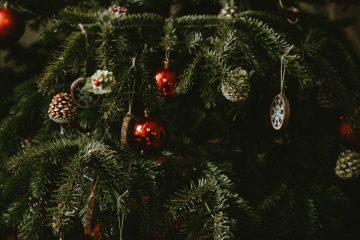 sustainable christmas tree