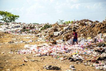 waste crime
